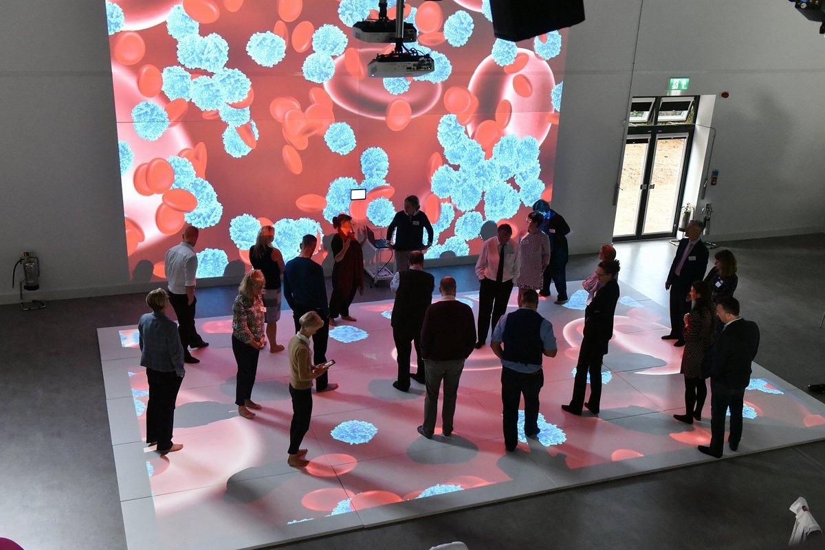 interactive walls